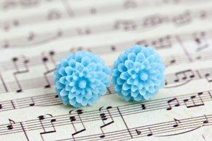 Krysantemum - ljusblå